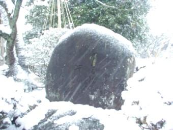 茶谷竜杖の句碑